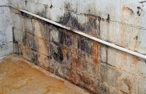 water-damaged-wall